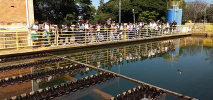 Educação Ambiental: Escola Dhamen visita Saema